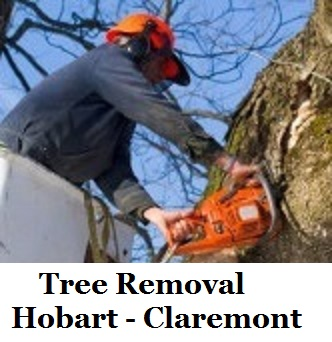 Tree Removal Hobart Claremont