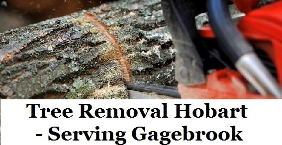 Tree Removal Hobart Gagebrook