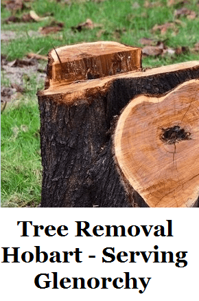 Tree Removal Hobart Glenorchy
