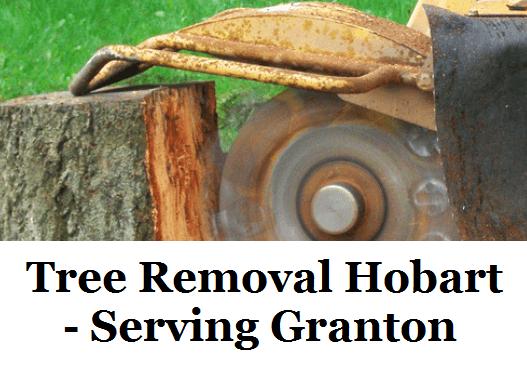 Tree Removal Hobart Granton