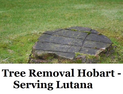 Tree Removal Hobart Lutana